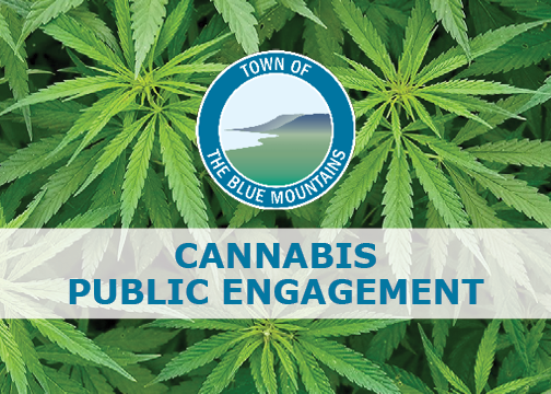 Cannabis Public Engagement - January 7th, 2019