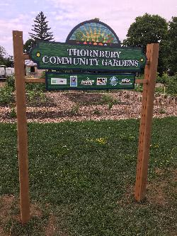 Thornbury Community Gardens Thriving amidst Vandalism