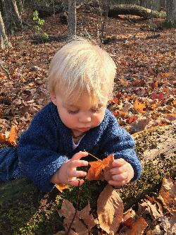 100 Acre Wood Forest Preschool is looking for a Home